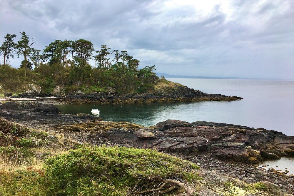 В Канаде защитники природы решили купить остров за $1,7 млн