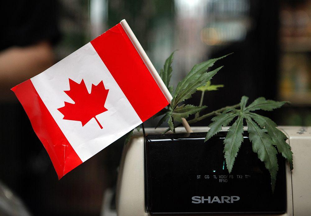 Image result for В Канаде марихуаны