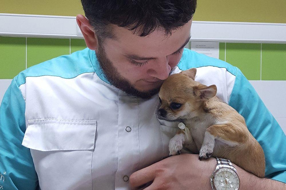 «Отказников приносят раз в месяц». Ветеринар из Челябинска, на которого пожаловались в прокуратуру, — о том, почему спасает животных от усыпления