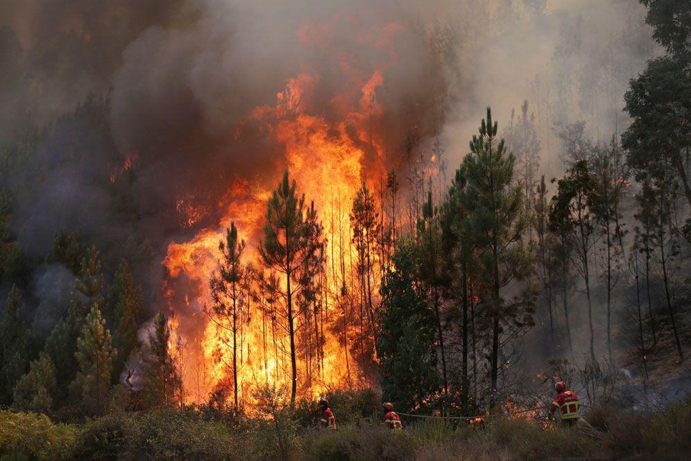 фото лесного пожара в россии что юрмальских