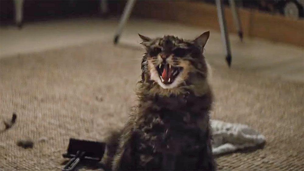 Вышел трейлер ремейка фильма «Кладбище домашних животных»
