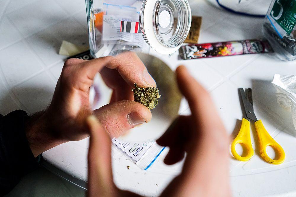 Легализована марихуана в израиле очищает ли молоко организм от марихуаны