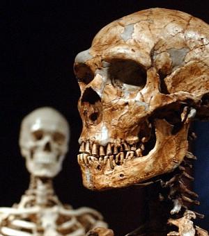 Во Франции нашли фрагмент веревки возрастом больше 40 тысяч лет